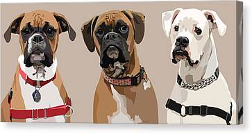 Three Boxers Canvas Print by Kris Hackleman