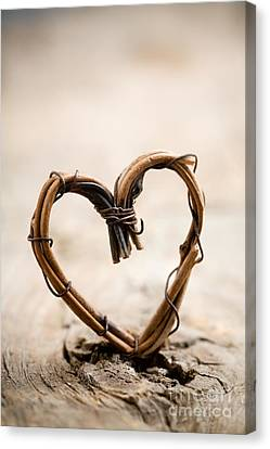Valentine Heart Canvas Print