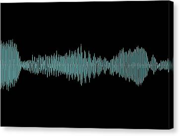 Whale Song Canvas Print by