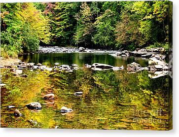 Williams River Autumn Canvas Print by Thomas R Fletcher