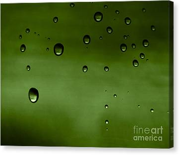 Drops Canvas Print by Odon Czintos