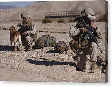 A Dog Handler And His Military Working Canvas Print
