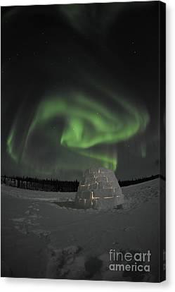 Aurora Borealis Over An Igloo On Walsh Canvas Print