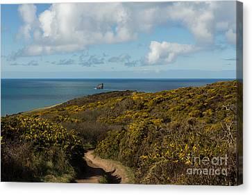 Cornish Seascape St Agnes  Canvas Print by Brian Roscorla