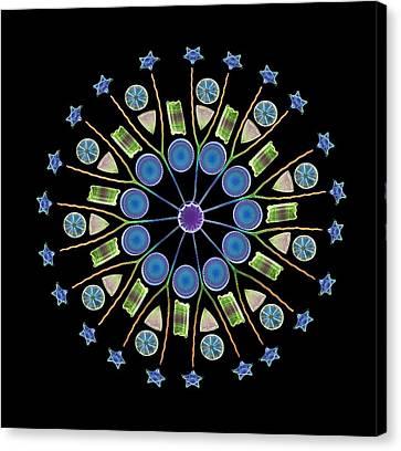 Diatom Assortment, Sems Canvas Print by Steve Gschmeissner