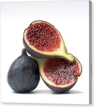 Vitamine Canvas Print - Figs by Bernard Jaubert