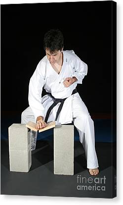 Karate Canvas Print by Ted Kinsman