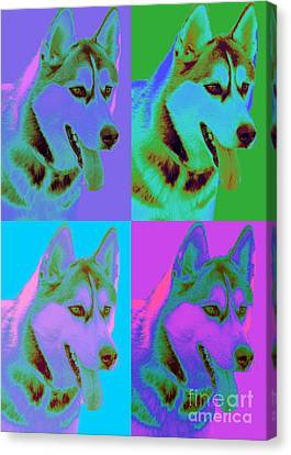 Pop Art Siberian Husky Canvas Print by Renae Laughner