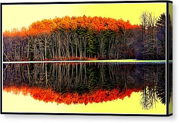Reflections At Farrington Lake Canvas Print by Aron Chervin