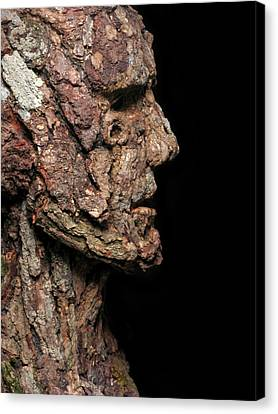 Revered  A Natural Portrait Bust Sculpture By Adam Long Canvas Print by Adam Long