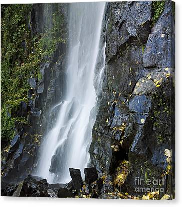 Waterfall Of Vaucoux. Puy De Dome. Auvergne. France Canvas Print by Bernard Jaubert