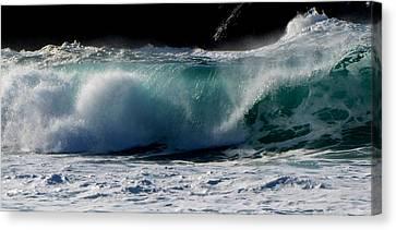 Waves Canvas Print by Barbara Walsh
