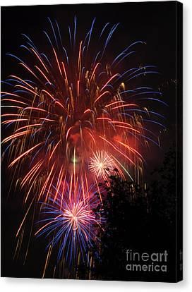 4th Of July Fireworks - Salt Lake City- Utah Canvas Print by Gary Whitton