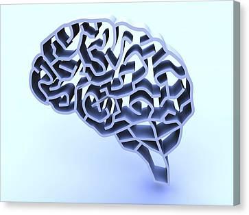Brain Complexity, Conceptual Artwork Canvas Print by Pasieka