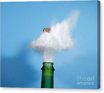 Champagne Cork Popping Canvas Print by Ted Kinsman