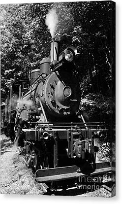 Climax Geared Locomotive Canvas Print by Thomas R Fletcher