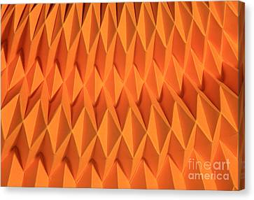 Mathematical Origami Canvas Print by Ted Kinsman
