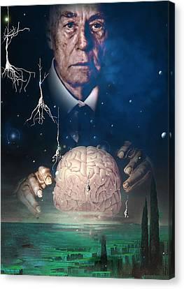 Alzheimer's Disease Canvas Print by Hans-ulrich Osterwalder