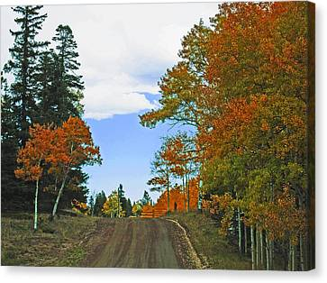 Fall Colorado Series Canvas Print by Tammy Sutherland
