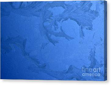 Frost On A Windowpane Canvas Print by Thomas R Fletcher