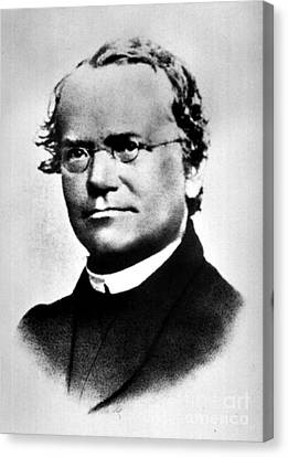 Gregor Mendel, Father Of Genetics Canvas Print by Science Source