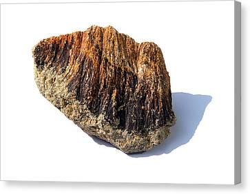 Rock From Meteorite Impact Crater Canvas Print by Detlev Van Ravenswaay