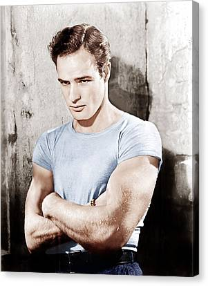 A Streetcar Named Desire, Marlon Canvas Print by Everett