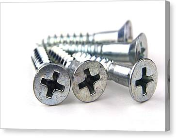 Silver Screws Canvas Print by Blink Images