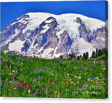 #73 Blooms At Paradise Canvas Print