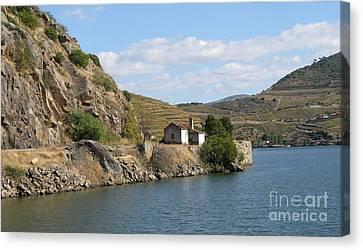 Douro River Valley Canvas Print by Arlene Carmel