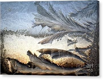 Frost On A Windowpane Canvas Print by Thomas R Fletcher