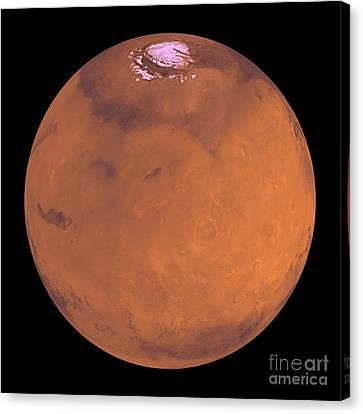 Mars Canvas Print by Stocktrek Images