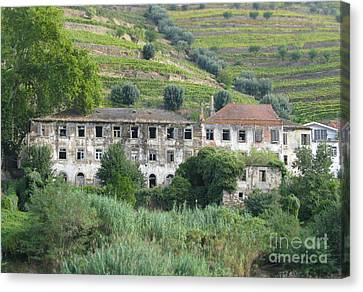 Douro River Valley Canvas Print by Arlene Carmel