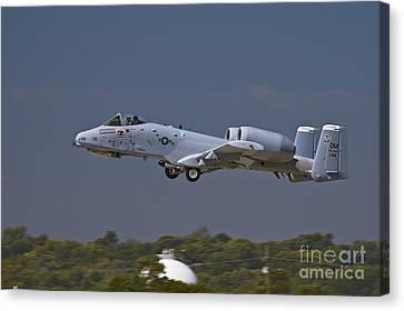 A-10 Thunderbolt Takeoff Canvas Print by Tim Mulina