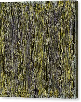 A Beautiful Dream IIi Canvas Print by James Mancini Heath