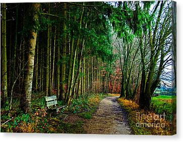 Out Of The Woods Canvas Print - A Beautiful Memory by Syed Aqueel