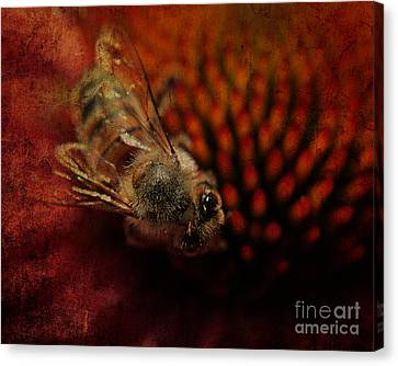 a Bee Canvas Print by Billie-Jo Miller