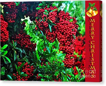 A Berry Merry Christmas Canvas Print by Kaye Menner
