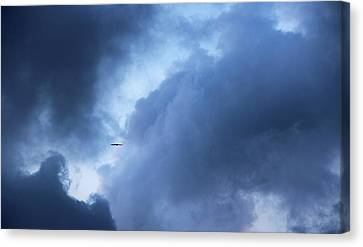 A Bird Flying In Cloudy Sky Canvas Print by Gal Ashkenazi
