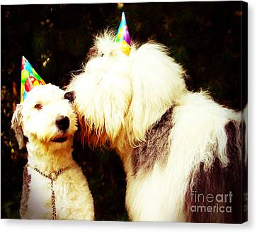 A Birthday Kiss Canvas Print