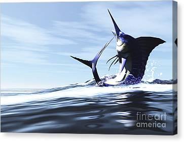 A Blue Marlin Jumps Through The Ocean Canvas Print by Corey Ford