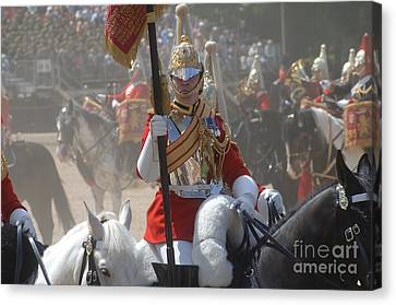 A British Life Guard Of The Household Canvas Print by Andrew Chittock