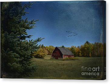 A Brush With Fall Canvas Print by The Stone Age