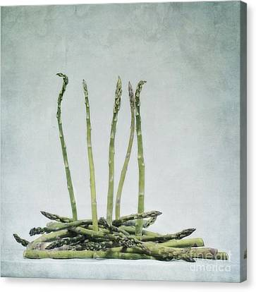A Bunch Of Asparagus Canvas Print by Priska Wettstein