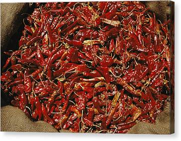 A Burlap Bag Full Of Red Hot Peppers Canvas Print by James P. Blair