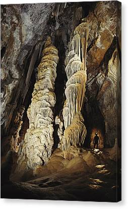 A Caver Is Dwarfed By Giant Calcite Canvas Print by Michael Nichols