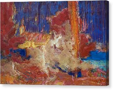 A Chord Of Trpanj Canvas Print by Petro Bevza