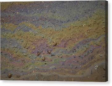 A Close-up Of A Parking Lot Oil Slick Canvas Print by Joel Sartore