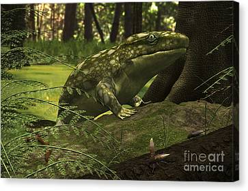 A Close-up Of A Three Foot Long Canvas Print by Walter Myers