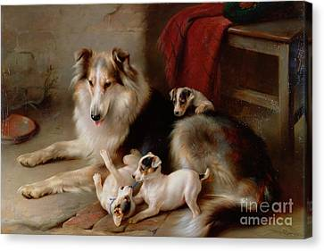 A Collie With Fox Terrier Puppies Canvas Print